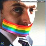 Entre a homofobia e a inconstitucionalidade