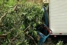 Caminhão cai em barranco e duas pessoas morrem em Pancas