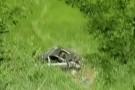 Pancas: Corpo de padeiro é encontrado em carro que caiu em ribanceira