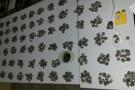 Policiais apreendem mais de 600 buchas de maconha, dinheiro e outros objetos em Ecoporanga