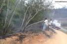 Incêndio destrói área de preservação em Barra de São Francisco