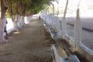Destruição de campo de futebol e gastos com diárias mostram a dura realidade em Mantenópolis