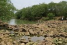 São Mateus, Mantenópolis e São Gabriel da Palha na lista de situação crítica de abastecimento de água