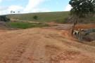 Governo do Estado assina nesta quinta-feira, ordem de serviço para retomada das obras de asfaltamento do trecho Vila Pavão x Praça Rica