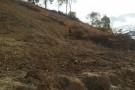 PM flagra e IDAF notifica desmatamento às margens do Rio São Mateus em Vila Paulista