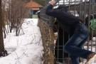 Amigos avisam, mas rapaz acaricia urso em jaula e perde um braço; veja vídeo