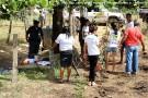 SiteBarra alunos recuperam nascentes em barra de sao francisco (44)