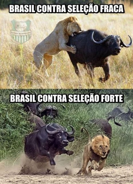 SiteBarra - memes brasil 7 x 1 haiti  (15)