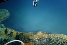 Lago 'assassino' no Golfo do México é lindo e letal. Veja fotos