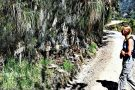 Conheça (sem correr risco) a estrada mais mortal do mundo