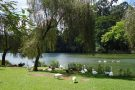 Recém-nascido é encontrado morto em lago de São Paulo