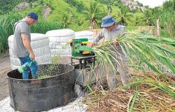 Pecuaristas capixabas dobram produção de leite com mudança de manejo