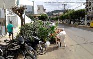 Após polêmica com poda de árvore, Barra de São Francisco se une para ajudar idoso que vende mudas no centro da cidade