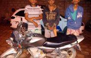 PM de Ecoporanga age rápido e prende três homens quando furtavam loja New Phone