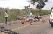 Ventania derruba árvore em cima de motociclista em Nova Venécia