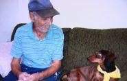 Brasil: Cão morre ao defender dono de ataque de pit bull