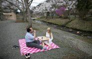 Japoneses se apaixonam e levam vida de casados com bonecas; veja algumas histórias e fotos