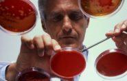 Sexo oral ajuda a espalhar superbactéria da gonorreia, alerta OMS