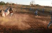 Brasil: Peão de Rodeio de 19 anos morre após levar coice de touro na cabeça; VÍDEO