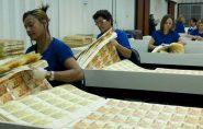 Casa da Moeda e mais 57 serão privatizados no Brasil; entenda