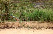 Homem morre em grave acidente com moto em Pancas