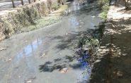 Com Rio Itaúnas cada vez mais seco, pode faltar água em Barra de São Francisco