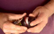 Conhece? Produção de mangostão vira alternativa de renda no Norte do ES
