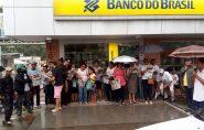 Polêmica: vereadores derrubam o Projeto de Lei que libera o plantio industrial de Eucalipto em Ecoporanga