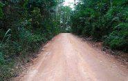 Advogada discute com internautas, mas prefeito manda patrolar estradas em Rio Bananal