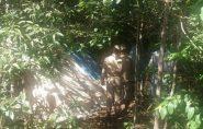 Brasil: idoso é localizado pela família após passar dois anos em mata