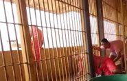 Brasil: detento filma fuga de outros presos em cadeia; veja vídeo