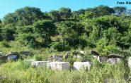 Agricultor denuncia vereador por degradação ambiental em Nova Venécia