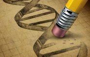 Para onde o mundo vai: edição de DNA pode acabar com a febre amarela e até ser a cura do câncer