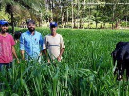 Filho assume atividade leiteira, profissionaliza produção e resultados surpreendem em Água Doce do Norte