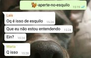 WhatsApp trava por conta de um emoji de esquilo; entenda