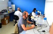 Em 24 horas, número de casos confirmados de malária em Vila Pavão salta de 62 para 86