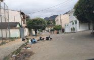 Urubus invadem Ecoporanga e cidade vira piada na internet