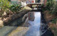 Dois rios que passam pelo centro de Barra de São Francisco pedem socorro