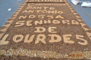 SiteBarra+Barra+de+Sao+Francisco+DSC_01030