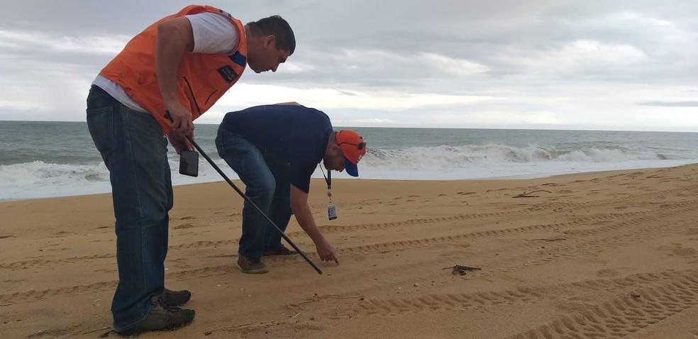 Funcionários da Prefeitura de Vila Velha procuraram fragmentos de óleo nesta terça, mas não encontraram — Foto: Divulgação/Prefeitura de Vila Velha