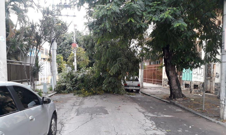 Chuva provoca queda de árvore no Rio de Janeiro